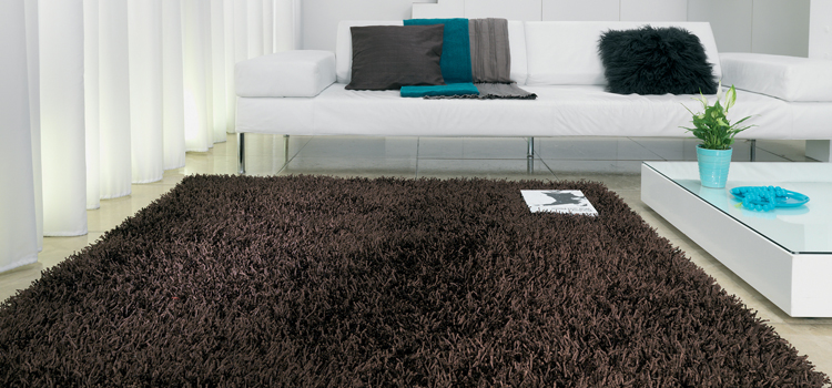 Buying guide for Brown Rugs