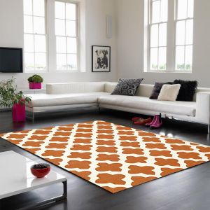 Artisan Terracotta Wool Rug by Asiatic 1