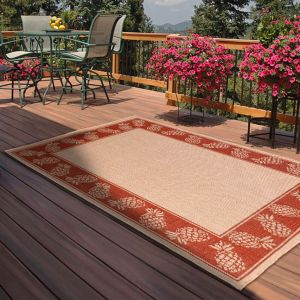 Outdoor Pineapple Terracotta Rug by Rug Style