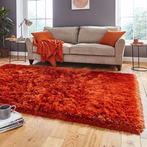 Think Rugs Polar PL 95 Terra Thick Shaggy Rug